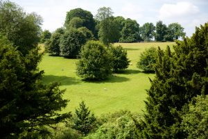 Highclere_Castle_25July_2107 031