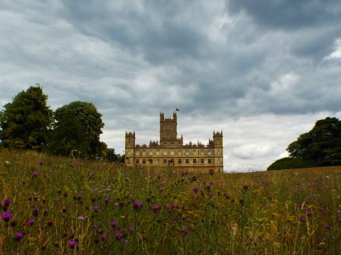 An Afternoon at Highclere Castle 17-07-18 (49)