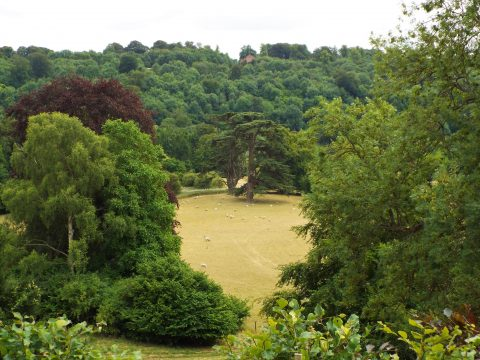 An Afternoon at Highclere Castle 17-07-18 (86)